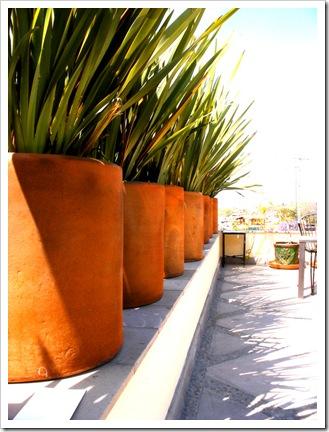 terracotta-pots