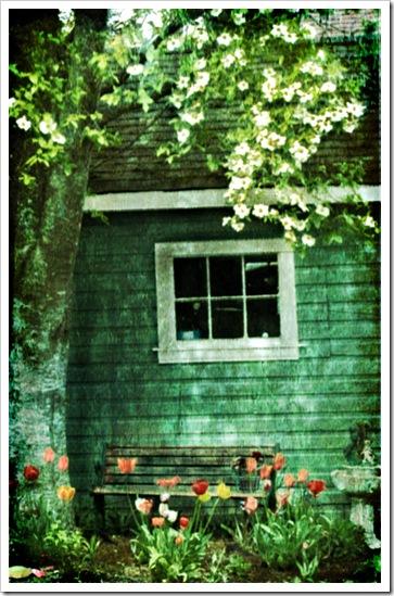 garage-flowers-3-copy