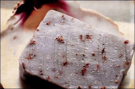 soap-gecko-lavender