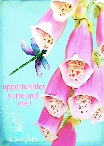 Opportunities, digital, art, pink, turquoise, dragonfly, inspired